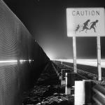 Migrazioni nella storia
